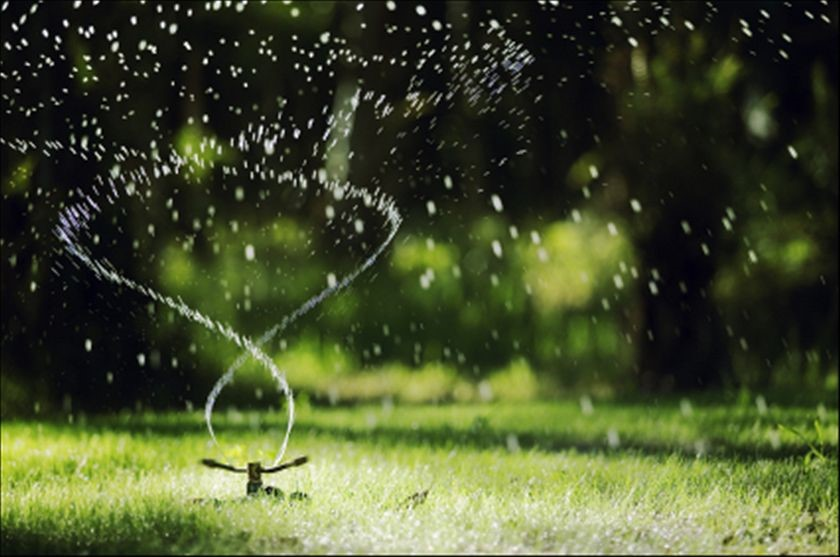 irrigation services albany