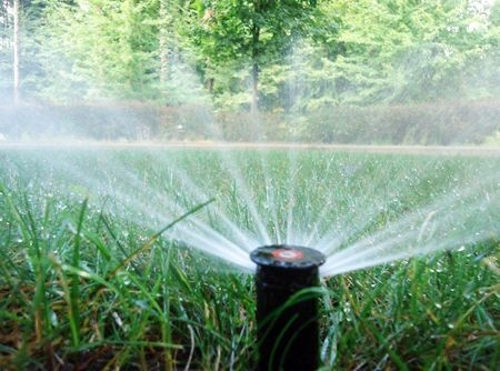 water efficient lawn irrigation