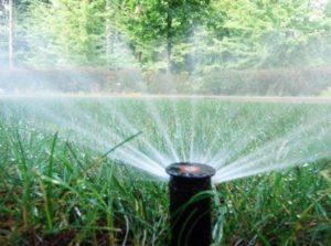Automated irrigation spigot